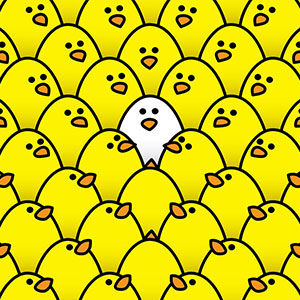 Illustration of lots of yellow chickens looking at a white chicken in the middle